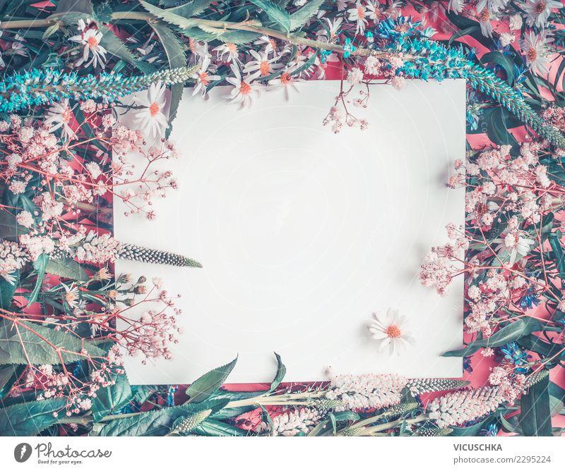 Weisses Papierblatt und wilde Blumen Natur blau Sommer weiß Hintergrundbild Frühling Stil Feste & Feiern rosa Textfreiraum Design Dekoration & Verzierung