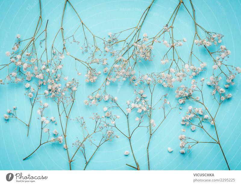 Kleine weiße Blumen auf türkis - ein lizenzfreies Stock Foto von ...