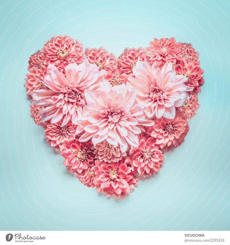 Herz aus rosa Blumen Pflanze blau Sommer Blüte Liebe Stil Feste & Feiern Design Dekoration & Verzierung Geburtstag Zeichen Hochzeit Symbole & Metaphern