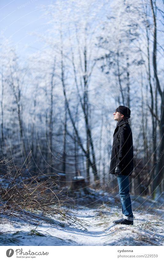 -10 Grad Lifestyle elegant Stil Wohlgefühl Erholung ruhig Freiheit wandern Mensch Junger Mann Jugendliche 18-30 Jahre Erwachsene Umwelt Natur Landschaft Winter
