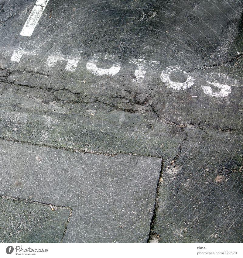 Leidenschaft weiß grau Fotografie Beton kaputt Schriftzeichen Boden Bodenbelag Streifen einzigartig Buchstaben Bild Asphalt Information Wort bleich
