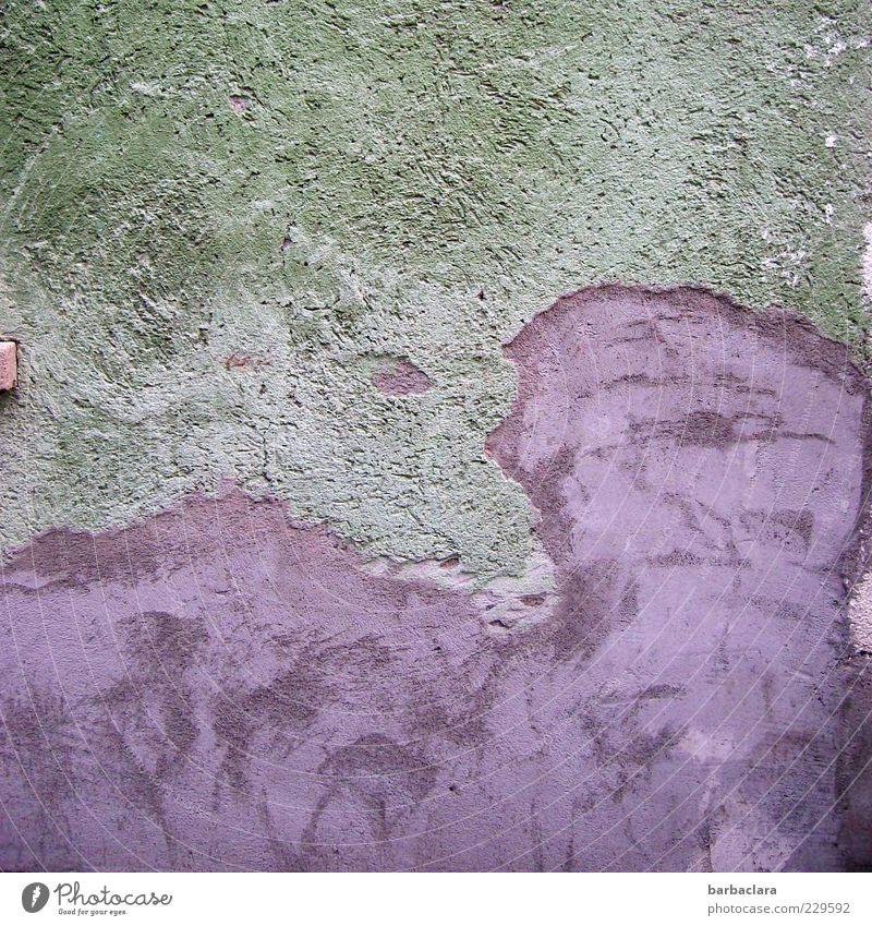 Lila Kuh Wand grau Gebäude Stein Mauer Fassade Beton ästhetisch Baustelle einzigartig violett Kreativität trashig skurril Handwerk Textfreiraum