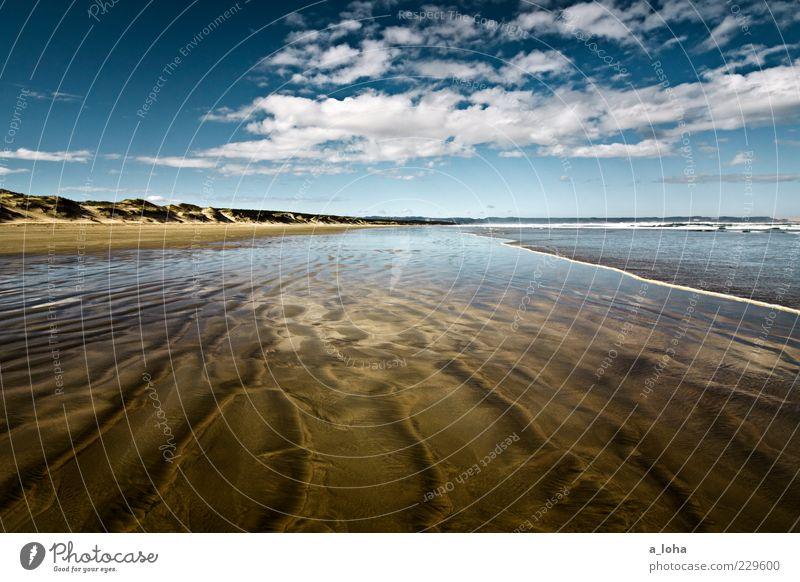 i'm dreaming of...* Natur Landschaft Urelemente Sand Wasser Himmel Wolken Klima Schönes Wetter Küste Strand Meer nass natürlich Fernweh Ferne Nordinsel