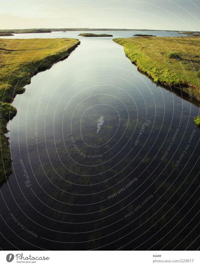 Wasserstand ruhig Umwelt Natur Landschaft Urelemente Wiese Seeufer Flussufer dunkel groß wild Island Gewässer Quelle Ursprung Delta Klarheit Farbfoto mehrfarbig