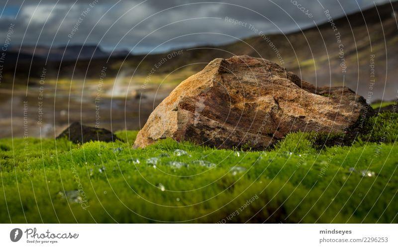 Unten im Moos Natur Ferien & Urlaub & Reisen Farbe grün Landschaft Erholung Einsamkeit Wolken ruhig Stein Felsen wild träumen Erde gold Idylle