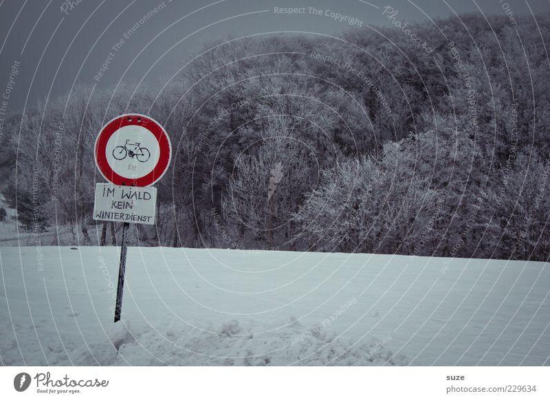 So so Umwelt Natur Landschaft Himmel Wolkenloser Himmel Winter Schnee Wald Schilder & Markierungen Hinweisschild Warnschild dunkel kalt grau Verbote Schneedecke