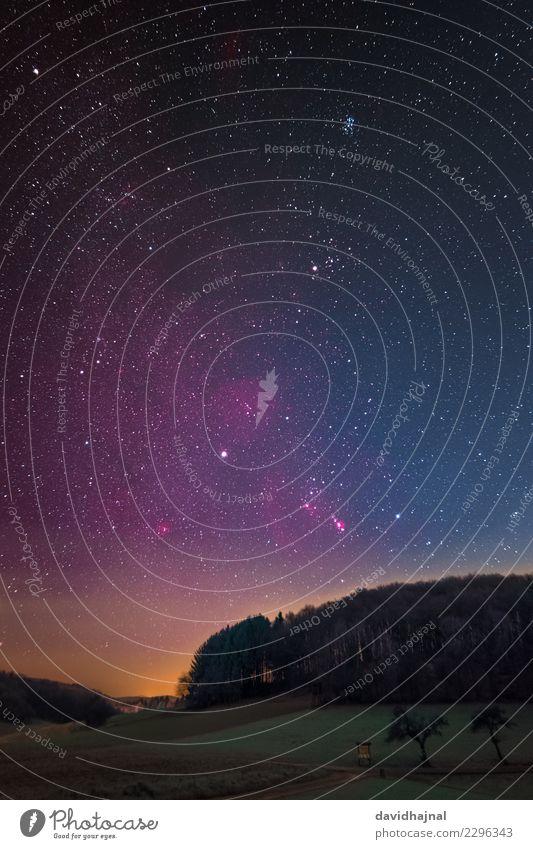 Nachthimmel Wissenschaften Astronomie Weltall Infrarotaufnahme Kunst Kunstwerk Natur Landschaft Himmel Wolkenloser Himmel Stern Winter Baum Wald Hügel
