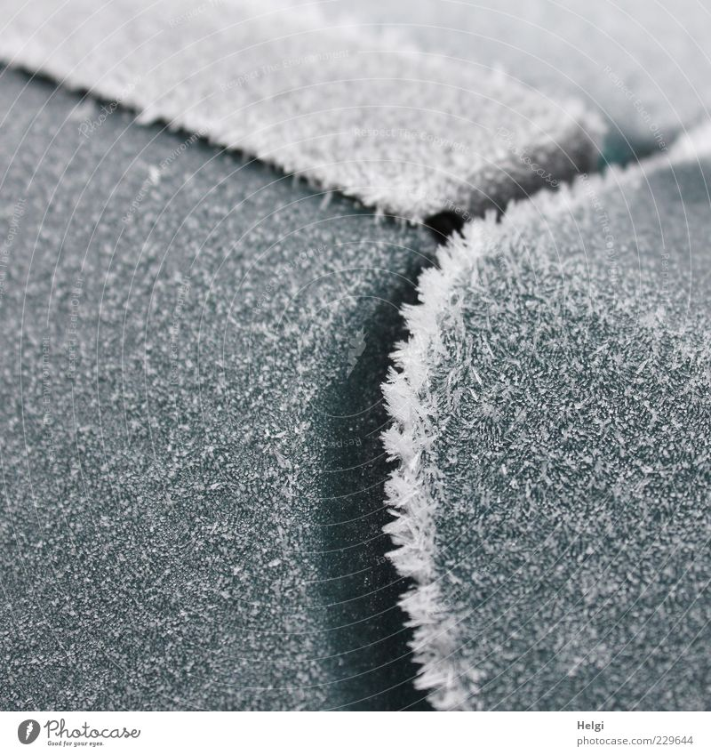 frostiger Morgen im März... Klima Wetter Eis Frost Metall Kunststoff frieren glänzend außergewöhnlich eckig einfach kalt rund grau weiß ästhetisch bizarr
