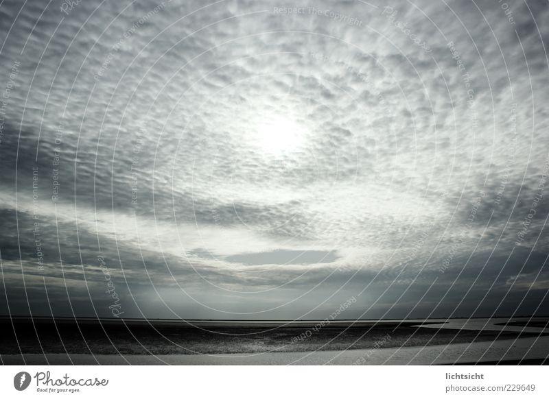 Wolkenmeer Umwelt Natur Landschaft Wasser Himmel Gewitterwolken Wetter Küste Strand Nordsee blau Ferne Wattenmeer Priel Ebbe Flut Halligen Hamburger Hallig