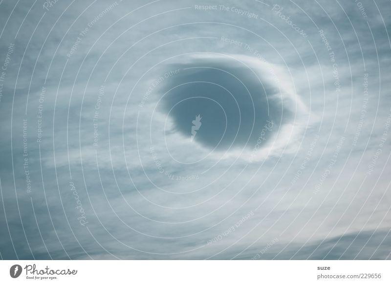 Wattebausch im Anflug Himmel Natur blau schön Wolken Umwelt Luft Wetter Klima Urelemente weich einzeln zart luftig Wolkenformation Wattewölkchen
