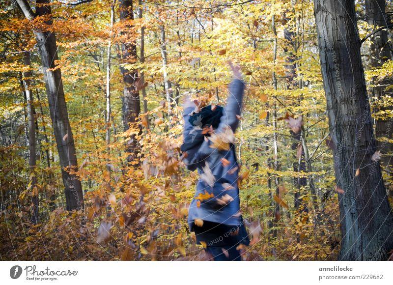 dreh dich! (I) Mensch Natur Jugendliche Freude Blatt Erwachsene Wald gelb Herbst Spielen Freiheit Tanzen Freizeit & Hobby Ausflug frei Fröhlichkeit