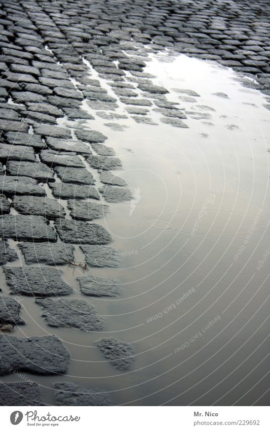 montag morgen Wasser Straße kalt grau Wege & Pfade Regen nass Klima feucht Verkehrswege Kopfsteinpflaster Straßenbelag Gewitter Pfütze Textfreiraum