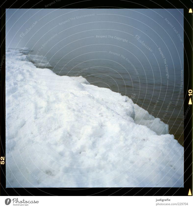 Küstennebel Natur Winter Strand dunkel kalt Schnee Landschaft Eis Stimmung Nebel Umwelt Frost Klima außergewöhnlich Ostsee