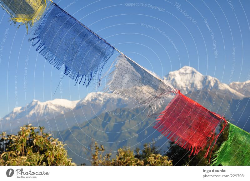 Morgenluft Natur Ferne kalt Umwelt Landschaft Berge u. Gebirge Wind hoch Klima Stoff Urelemente Fahne Klarheit Unendlichkeit Asien Gipfel