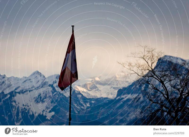 Winter von der Stange blau kalt Schnee Landschaft Berge u. Gebirge Eis Frost Fahne Schweiz Fahnenmast Geäst Schneebedeckte Gipfel hängend Farbverlauf