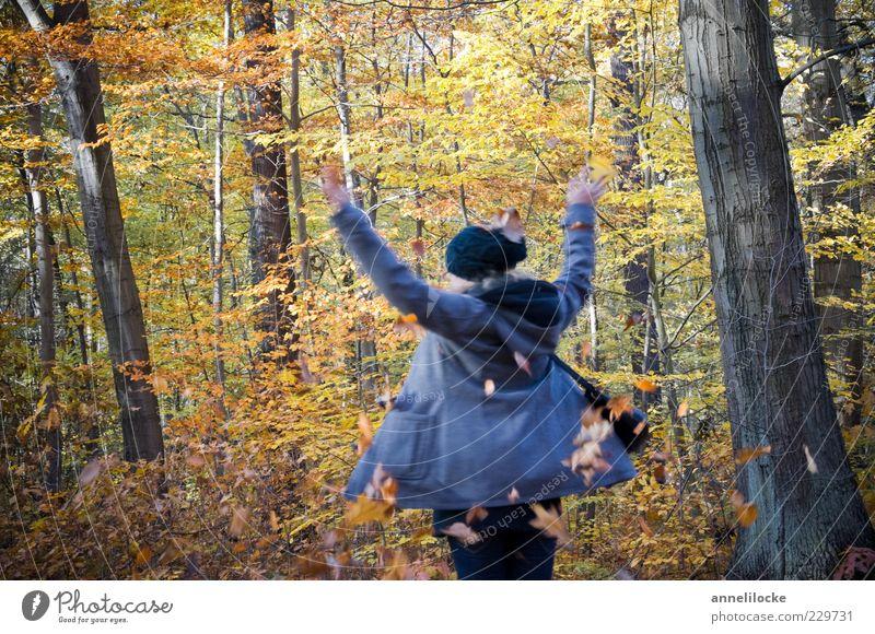 dreh dich! (II) Mensch Natur Jugendliche Freude Blatt Erwachsene Wald gelb Herbst feminin Spielen Freiheit Tanzen Freizeit & Hobby Ausflug