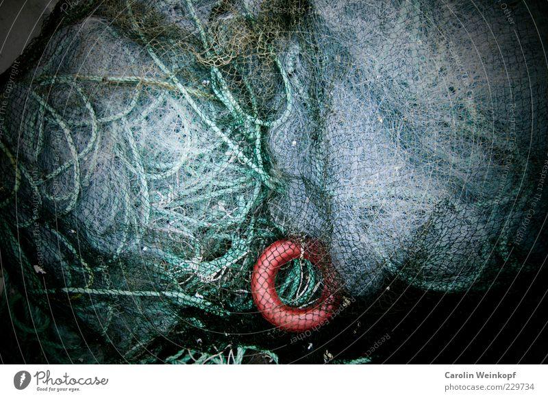 Networking. Netz Beruf Skandinavien chaotisch durcheinander Norwegen Fischereiwirtschaft Knoten Schlaufe Fischernetz