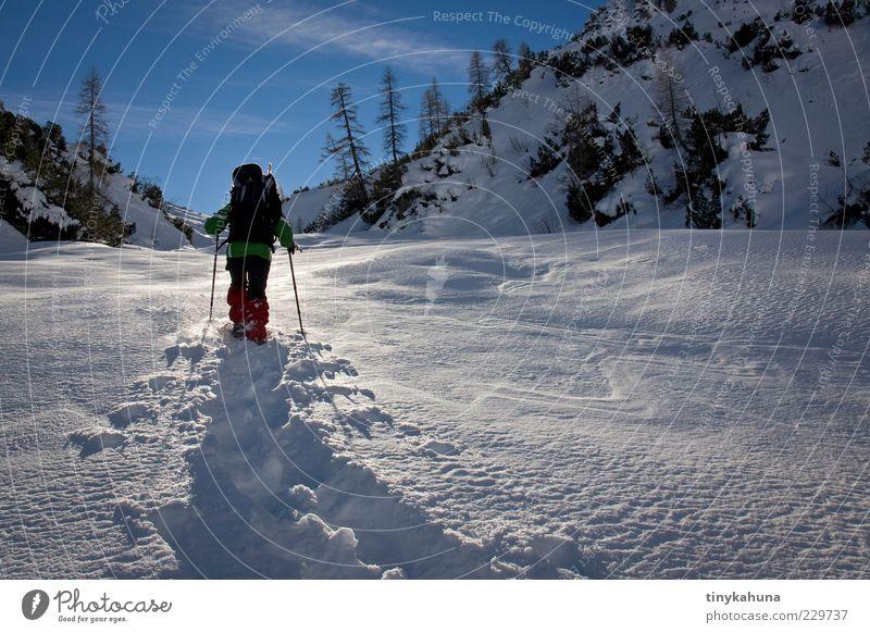 im Lechtal Mensch Natur blau weiß Ferien & Urlaub & Reisen Freude Winter kalt Schnee Landschaft Freiheit Berge u. Gebirge Bewegung glänzend Ausflug hoch