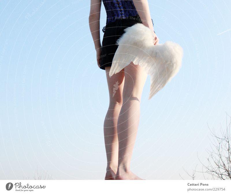 Hoffnung Mensch feminin Junge Frau Jugendliche Erwachsene 1 stehen warten violett weiß verkleiden Flügel Engel Beine Arme Feder mehrfarbig Außenaufnahme Tag