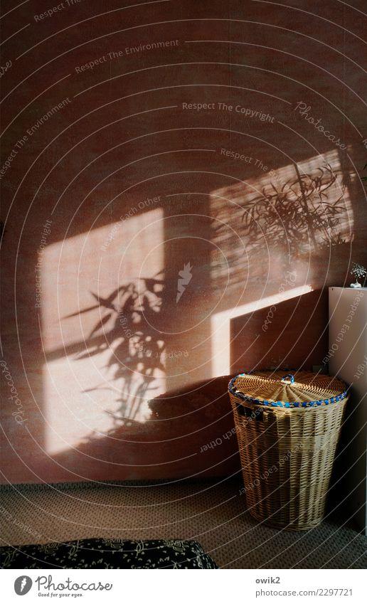 Sprich leise Häusliches Leben Wohnung Innenarchitektur Dekoration & Verzierung Schlafzimmer Wäschekorb Teppich Schrank Zimmerpflanze Mauer Wand Fenster leuchten