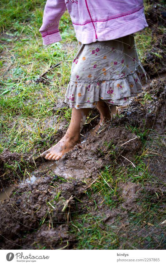 Kindheit Spielen Kindererziehung feminin Mädchen Körper 1 Mensch 3-8 Jahre Sommer Herbst Wiese schlammig Rock gehen Armut authentisch nass natürlich positiv