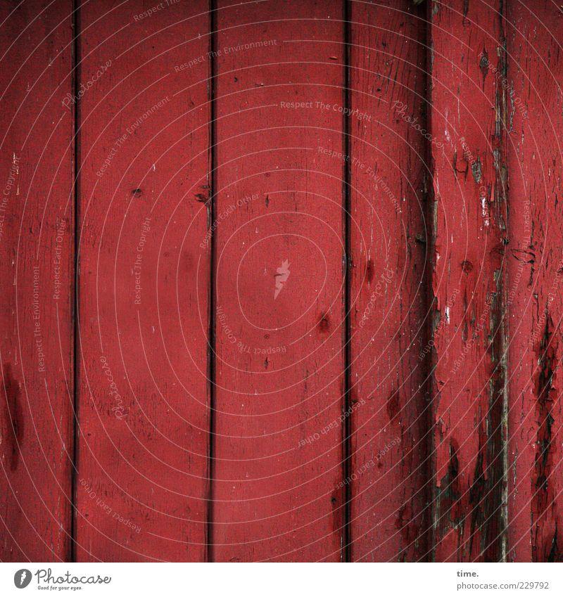 HH10.2 | Simply Red Tür Lack Holz alt ästhetisch kaputt nachhaltig rot Farbe Wand Holzwand parallel vertikal abblättern Farbstoff Holzbrett rustikal Farbfoto