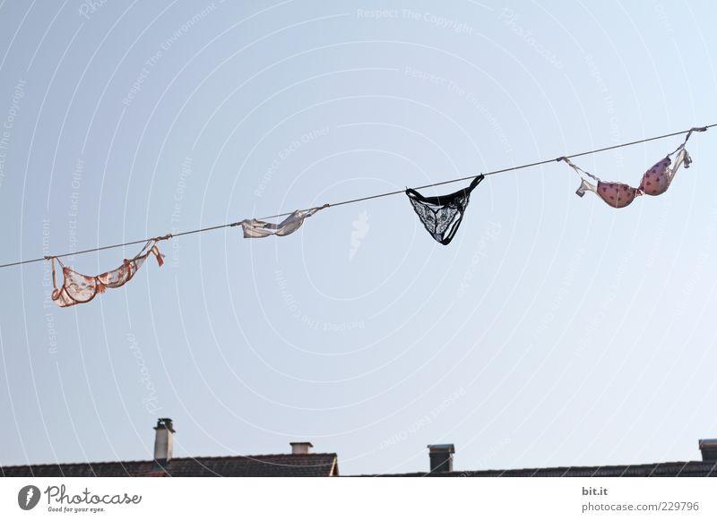 Sous les Dessous Luft Himmel Wolkenloser Himmel Dorf Haus Dach Schornstein Bekleidung Unterwäsche Stoff hängen Sauberkeit Freude Reinlichkeit Reinheit Unterhose