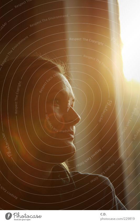 Frühlingssonne Sonne feminin Frau Erwachsene Kopf Gesicht 1 Mensch 30-45 Jahre beobachten warten ästhetisch natürlich Wärme braun gelb gold schwarz Gefühle