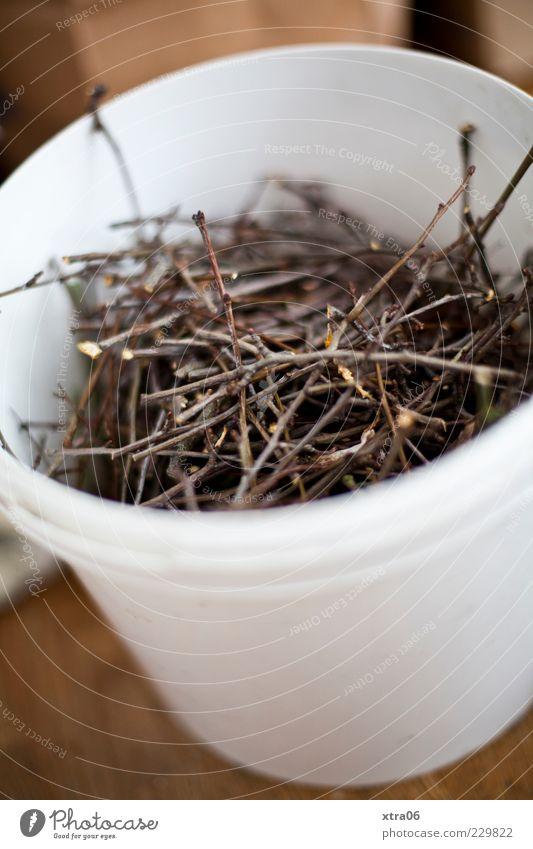 zweige weiß Holz rund dünn Sammlung Zweig Eimer Zweige u. Äste Inhalt Biomasse Biomüll