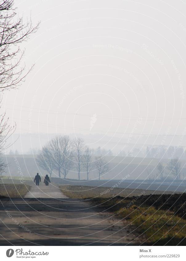 2 unter sich ruhig Ausflug Ferne Paar Partner Mensch Herbst Winter schlechtes Wetter Nebel Feld Straße Wege & Pfade gehen laufen Stimmung Liebeskummer Farbfoto
