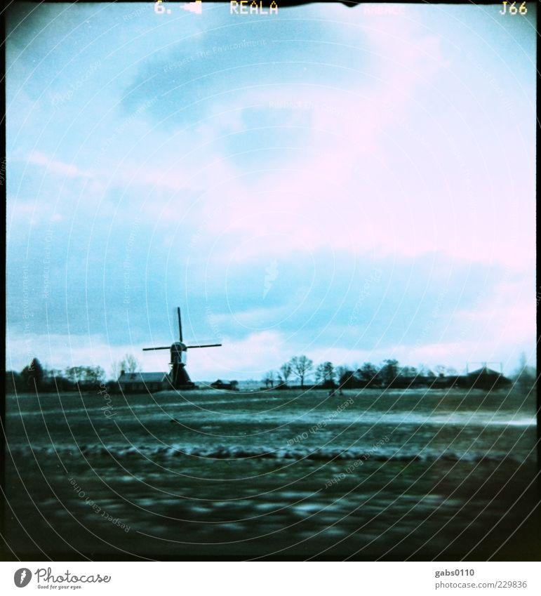 kalte Niederlande Himmel Wasser blau weiß grün Baum Pflanze Sonne Winter Wolken schwarz Ferne kalt Schnee Umwelt Gras