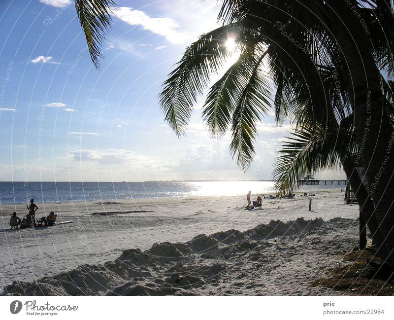 Am Strand Meer Palme Sand Sonne Himmel