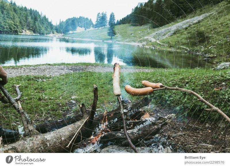 Bratwürste hochhalten Natur Ferien & Urlaub & Reisen Landschaft Erholung Berge u. Gebirge Frühling Holz Tourismus Ausflug Freizeit & Hobby warten einfach Feuer