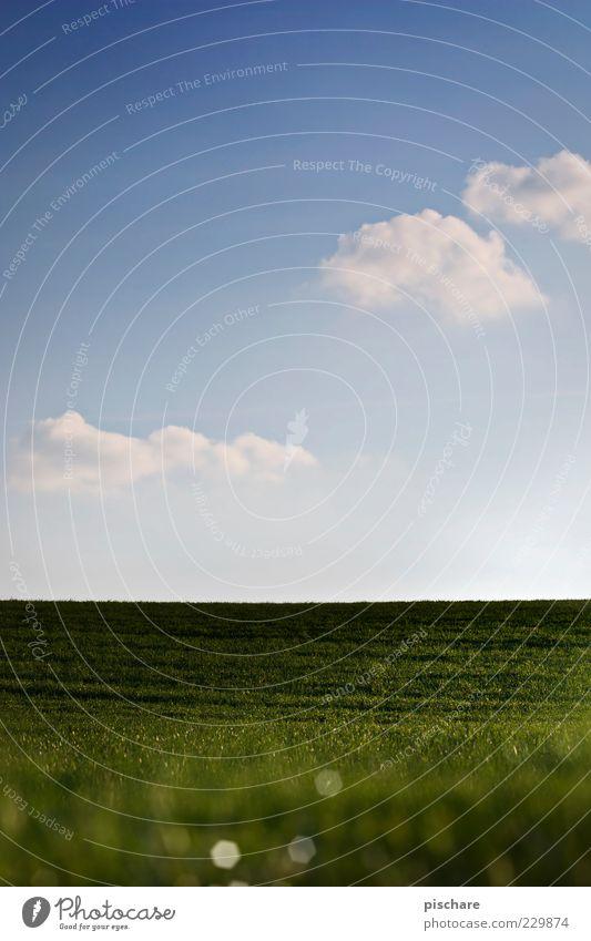Greener Grass Natur Himmel Wolken Frühling Sommer Schönes Wetter Wiese Hügel natürlich blau grün Idylle ruhig Farbfoto Außenaufnahme Textfreiraum oben Tag