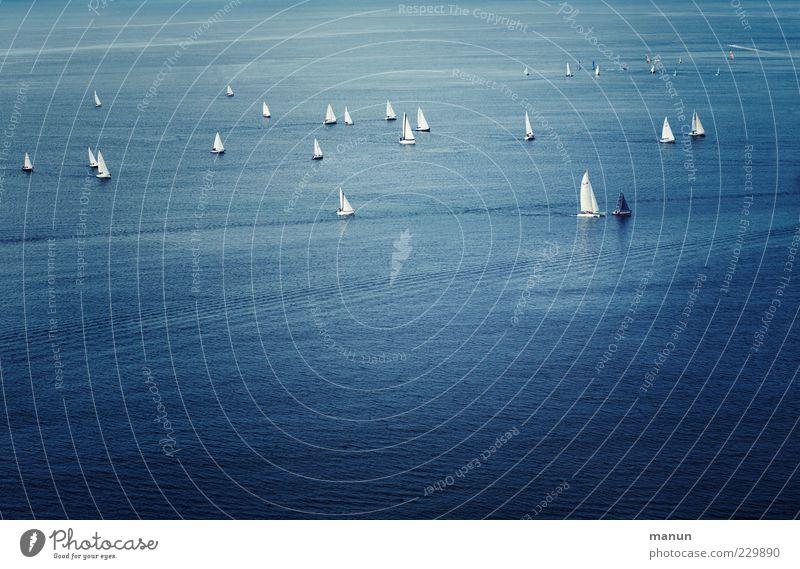 Spitzengruppe Lifestyle Freizeit & Hobby Sommer Meer Sport Wassersport Sportveranstaltung Segeln Segelurlaub See Sportboot Segelboot Coolness trendy Freude
