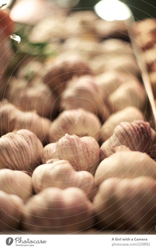 Vampires - Beware!!! weiß Gesundheit liegen rosa Lebensmittel frisch Ernährung viele Gemüse Kräuter & Gewürze lecker Bioprodukte Markt Geruch Vitamin