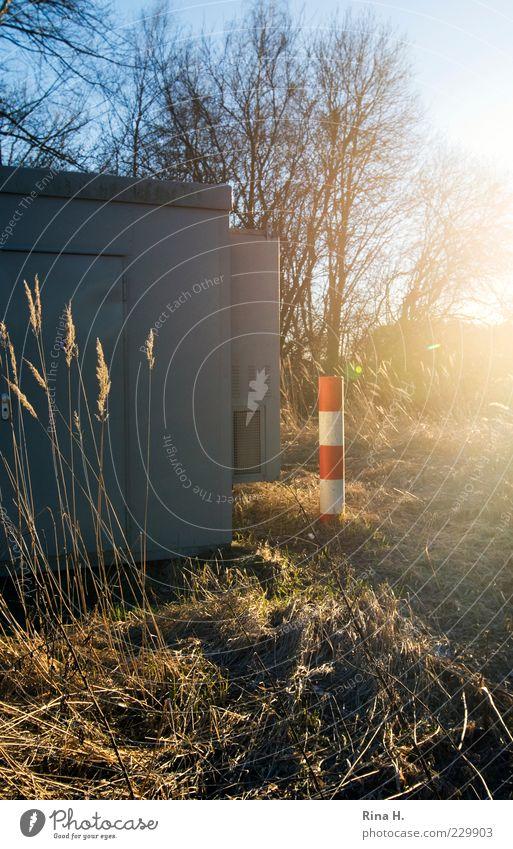 HandyMastAnlageDetail Technik & Technologie Fortschritt Zukunft Telekommunikation Natur Landschaft Pflanze Sonne Winter Schönes Wetter Gras Feld leuchten Umwelt