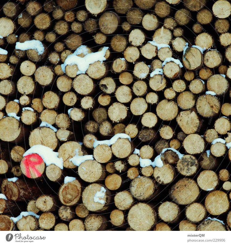 (R) Holz Baumstamm viele Muster Vorrat gefallen Umweltschaden Abholzung Klimawandel Holzstapel Stapel aufeinander Ordnung braun Ressource Forstwald rot Farbfoto