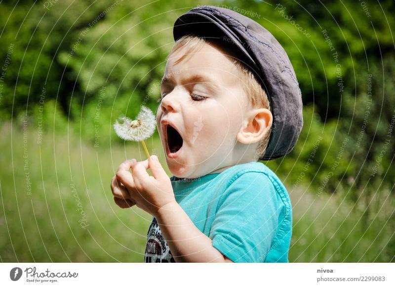 PFUSTE... Kindererziehung Wissenschaften Mensch maskulin Junge 1 3-8 Jahre Kindheit Umwelt Natur Landschaft Pflanze Tier Baum Blume Gras Löwenzahn Garten
