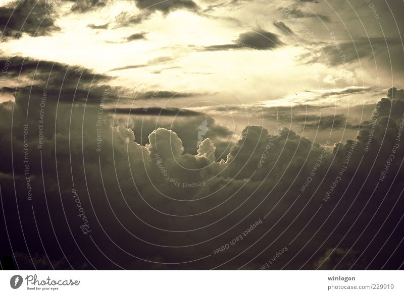 Himmel Natur Sonne Sommer Meer Wolken Ferne Freiheit Umwelt Landschaft Luft Wetter Kunst Horizont Instant-Messaging Ausflug