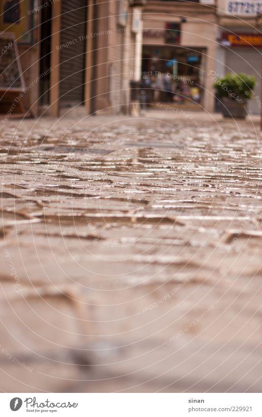 spanische Gasse Palma de Mallorca Spanien Dorf Hauptstadt Altstadt Menschenleer ästhetisch braun grau Zufriedenheit Klima Pflastersteine Regen Farbfoto