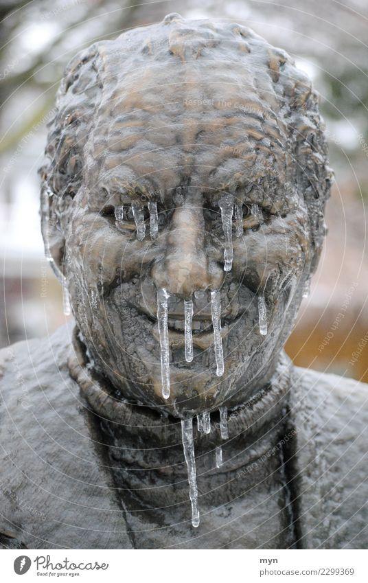 Gesund durch den Winter Mensch Mann Gesicht Erwachsene kalt Gesundheit Kopf Metall Eis Lächeln Nase Klima Tropfen Denkmal Krankheit