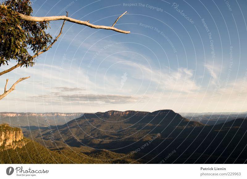 Echo point Umwelt Natur Landschaft Pflanze Himmel Wolken Sonnenlicht Sommer Klima Klimawandel Wetter Schönes Wetter Baum Wald Urwald Hügel Felsen