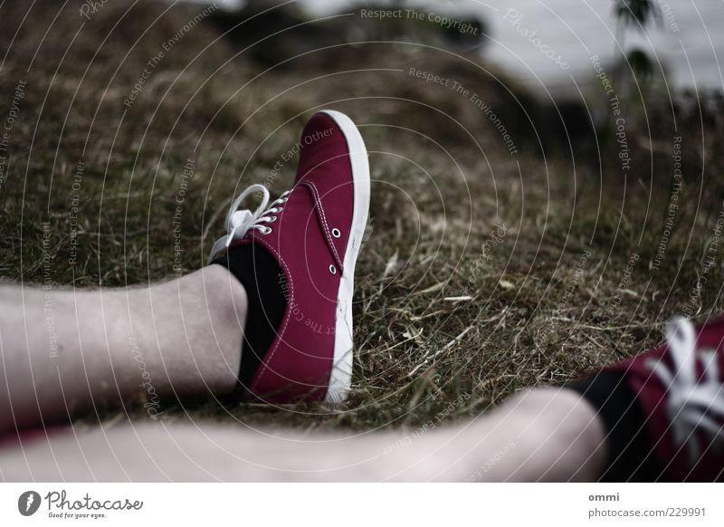 Ein Gefühl von Sommer Sonnenbad maskulin Freundschaft Beine Fuß 1 Mensch Natur Schönes Wetter Wiese Strümpfe Schuhe Turnschuh Erholung sitzen authentisch