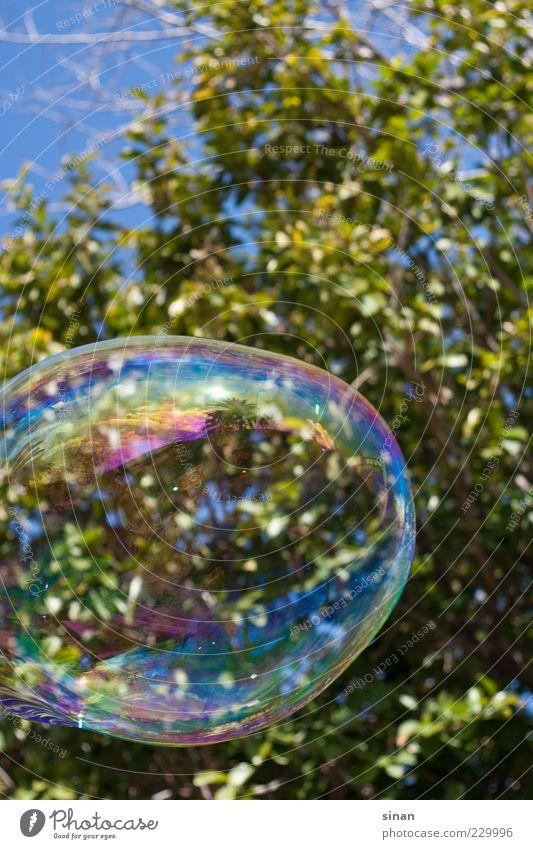 große Seifenblase Himmel Natur Wasser blau grün Baum Freude Blatt Spielen Kunst glänzend Fröhlichkeit rund Blase Schweben Spanien