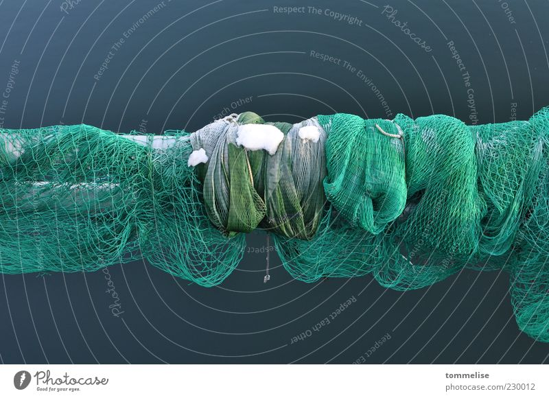 Keine Netzabdeckung grün Winter ruhig kalt Schnee Fischereiwirtschaft Schlaufe Fischernetz