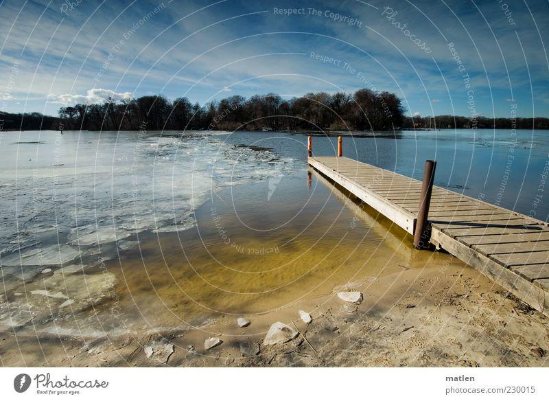 vom Eise befreit Landschaft Sand Wasser Himmel Wolken Sonnenlicht Frühling Schönes Wetter Frost Seeufer Bucht Menschenleer hell blau gelb Frühlingsgefühle Wald