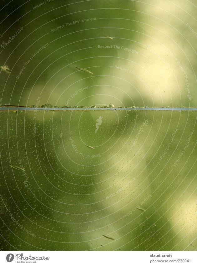 Glasbruch grün Linie Hintergrundbild kaputt Teilung Riss Zerstörung fein Durchblick Spalte Glasscheibe Bruch Material geteilt Zerbrochenes Fenster
