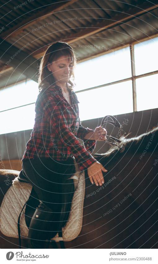 Reife Frau reitet ihr Pferd in ihrer Freizeit auf einem Bauernhof. Erwachsene Tier Konzepte & Themen Tag heimisch Pferderücken Innenaufnahme Lifestyle reif