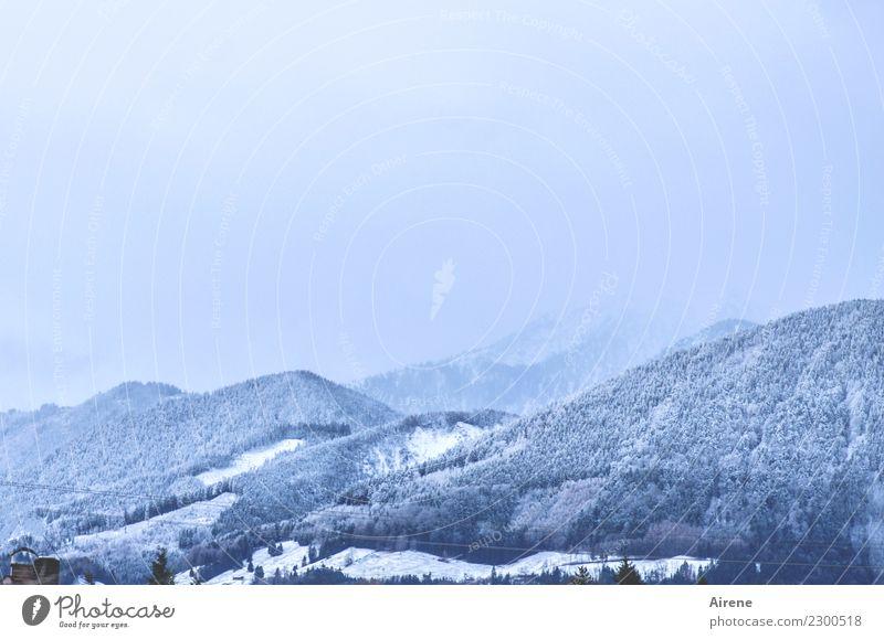 Morgenblau Natur weiß Winter Ferne Wald Berge u. Gebirge kalt natürlich Schnee Freiheit Hügel Unendlichkeit positiv Winterurlaub